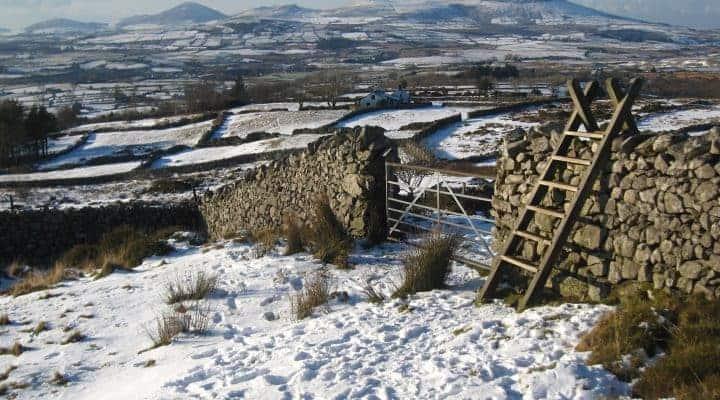 Eifionydd, cartref Selyf